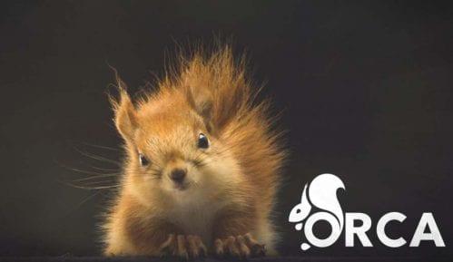 Otvoren konkurs za prve stanovnike Studentskog doma za dobrobit životinja i zaštitu prirode 10