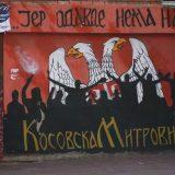Srpska lista nedeljnim izborima kupuje vreme 11