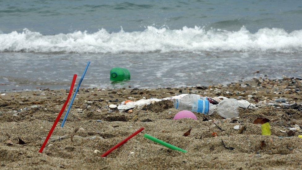 Više neće biti plastike tamo gde postoji razumna alternativa - što se EU nada da će pomoći plažama