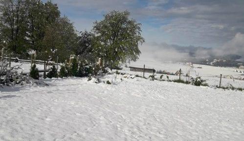 Majski sneg uništio maline u Moravičkom i Zlatiborskom okrugu, ima ga i u višim delovima Ivanjice 11