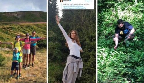 Tviter odgovori Ani Brnabić: Bukvalno tek izašli iz šume 14