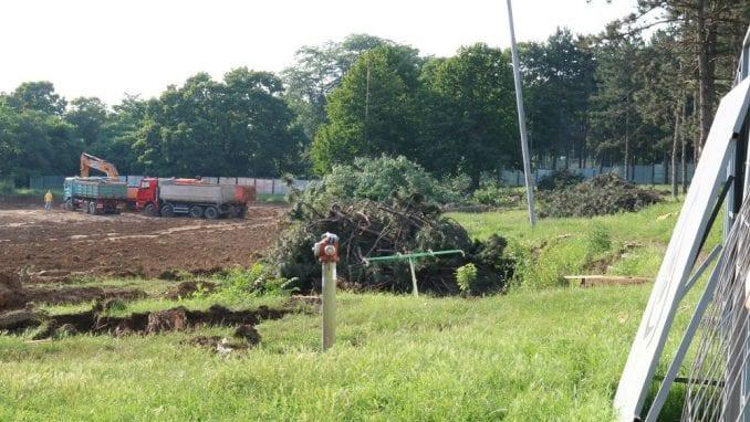 Zelena stranka traži od nadležnih dokaze o opravdanosti seče stabala u Košutnjaku 4