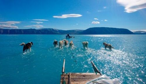 Fotografija pasa koji vuku sanke na Grenlandu - dokaz klimatske katastrofe 8