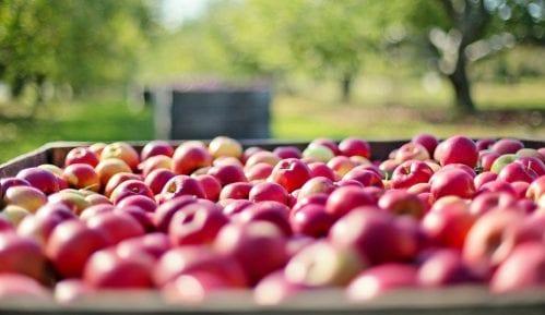 Koliko puta se prskaju jabuke u Srbiji? 8