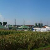 MK Grupa ulaže više od osam miliona evra u izgradnju elektrane na biomasu 14