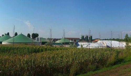 MK Grupa ulaže više od osam miliona evra u izgradnju elektrane na biomasu 13