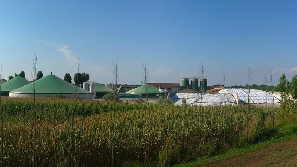 MK Grupa ulaže više od osam miliona evra u izgradnju elektrane na biomasu 1