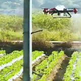 Kineski farmeri koriste dronove u poljoprivredi 10