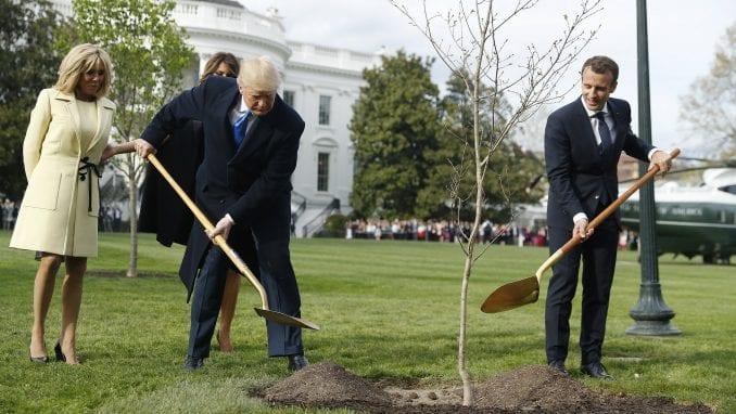 Osušilo se drvo prijateljstva Trampa i Makrona staro tek godinu dana 1