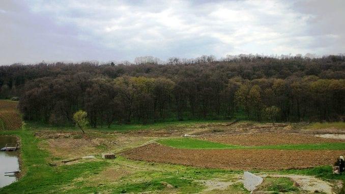 Počela akcija pošumljavanja Nacionalnog parka Fruška Gora 1