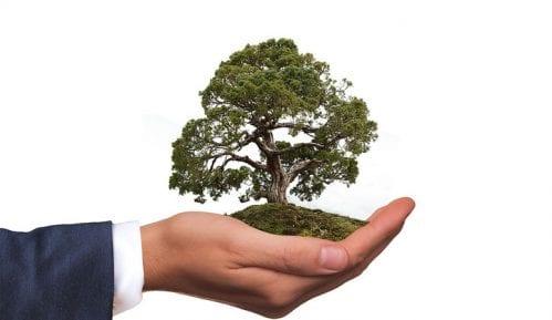 """Organizacije i neformalne grupe pokrenule projekat """"Zeleni inkubator"""" za zaštitu životne sredine 11"""