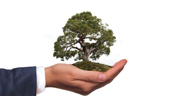 """Organizacije i neformalne grupe pokrenule projekat """"Zeleni inkubator"""" za zaštitu životne sredine 6"""