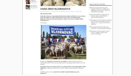 Naprednjaci neće da kažu zašto ih je slika ovaca uvredila 4