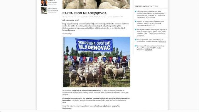 Naprednjaci neće da kažu zašto ih je slika ovaca uvredila 1