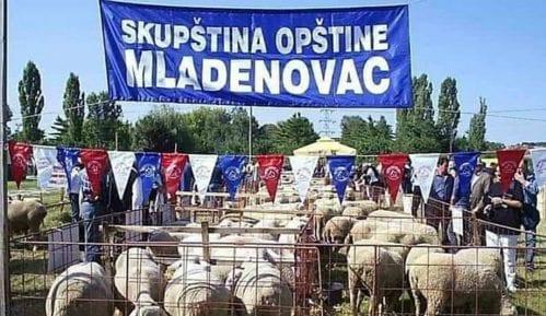 Kazna zbog objave slika ovaca na Fejsbuku 2