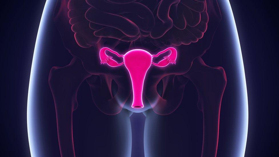 Kako jajnici proizvode manje jaja dok žene stare, telo proizvodi manje estrogena
