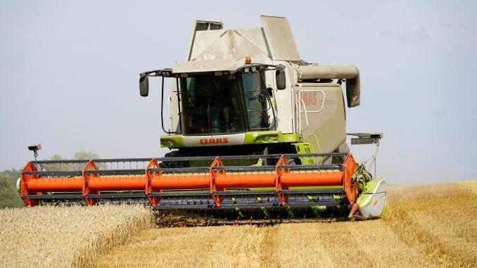 Pšenica manje rodila zbog sušne zime 1