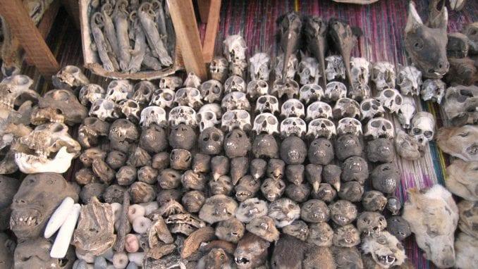 Togo: Ponuda na pijaci fetiša 1