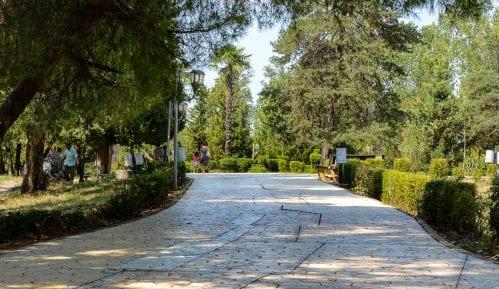 Tirana: Lišće i prisluškivanje 11