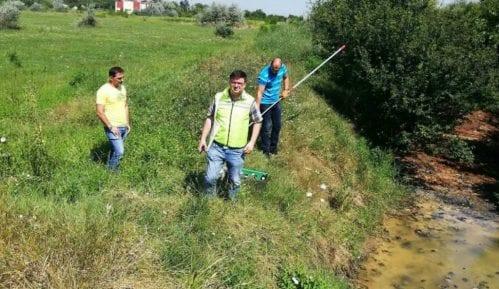 Čišćenjem deponije Zelena stranka Zrenjanin započela kampanju 10