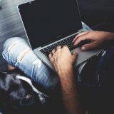 U Rumuniji i Danskoj porast uvoza laptop računara za više od 30 odsto 3