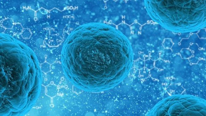 Cijanobakterije kao izvor metana 1