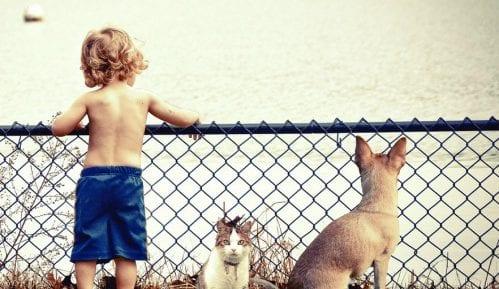 Zašto su psi slični deci? 15
