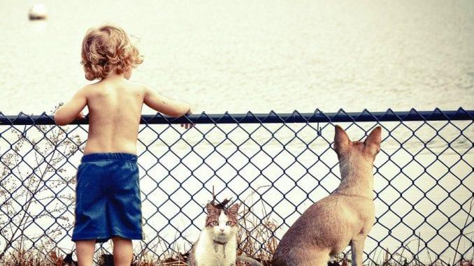 Zašto su psi slični deci? 1