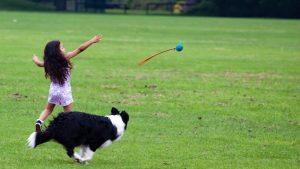 Zašto su psi slični deci? 4