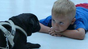 Zašto su psi slični deci? 3