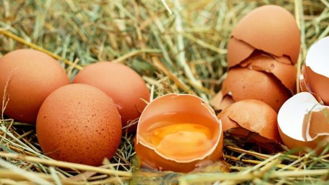 Bosni i Hercegovini odobren izvoz jaja u EU 4