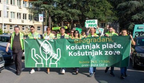 Građani zatražili sastanak sa ministarkom Mihajlović zbog seče stabala na Košutnjaku 8