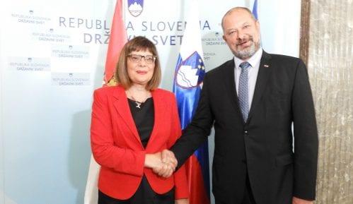 Gojković u Sloveniji: Prijateljska podrška Slovenije evropskom putu Srbije 15