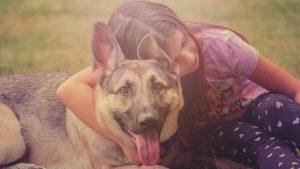 Zašto su psi slični deci? 2
