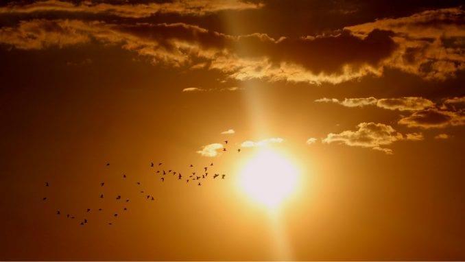 U Srbiji 25. avgusta sunčano i veoma toplo 1