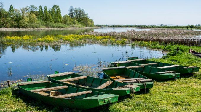 Koliko je priroda Srbije zaštićena 4