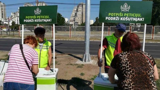 Zelena stranka skuplja potpise za sprečavanje seče drveća na Košutnjaku 1