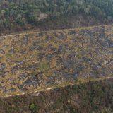 Zemlje G-7 najavile 20 miliona dolara pomoći Amazoniji u plamenu 12