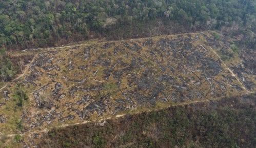 Zemlje G-7 najavile 20 miliona dolara pomoći Amazoniji u plamenu 10