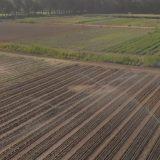 Kako izgleda farma budućnosti u Holandiji (VIDEO) 11