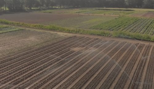 Kako izgleda farma budućnosti u Holandiji (VIDEO) 4