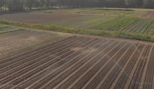 Kako izgleda farma budućnosti u Holandiji (VIDEO) 9