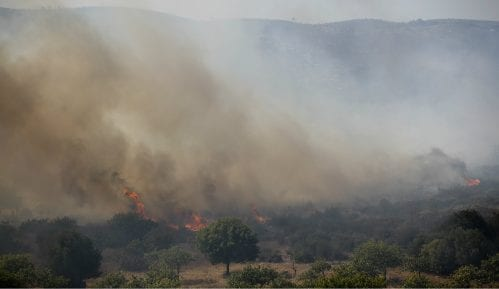 Blizu Epidaurusa u Grčkoj izbio šumski požar 1
