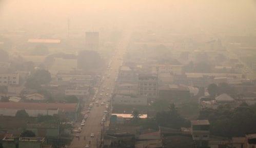 Šta znamo o požarima u Amazoniji? 11