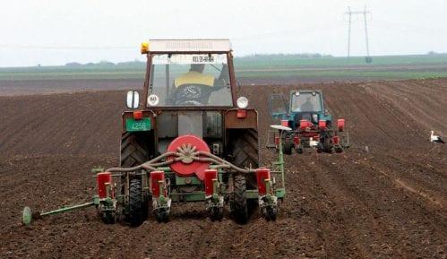 Pred setvu kukuruza država ukinula subvenciju za gorivo, skuplje seme, đubrivo i nafta 4