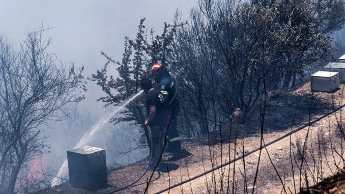 Hiljadu vatrogasaca protiv 50 šumskih požara u Grčkoj, najveći na ostrvu Eviji 1