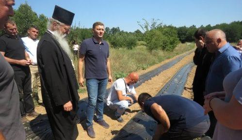 Šabac pomogao sedam srspkih porodica na Kosovu da zasade jagode 7