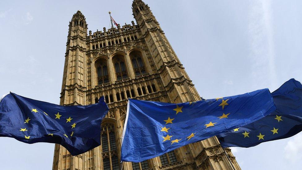 Eu zastava i parlament