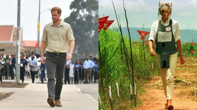 Princ Hari u minskim poljima Angole 22 godine nakon Dajane 4