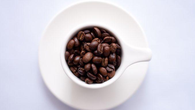 Na Karaburmi se danas kuvaju kafe za Ginisa 4